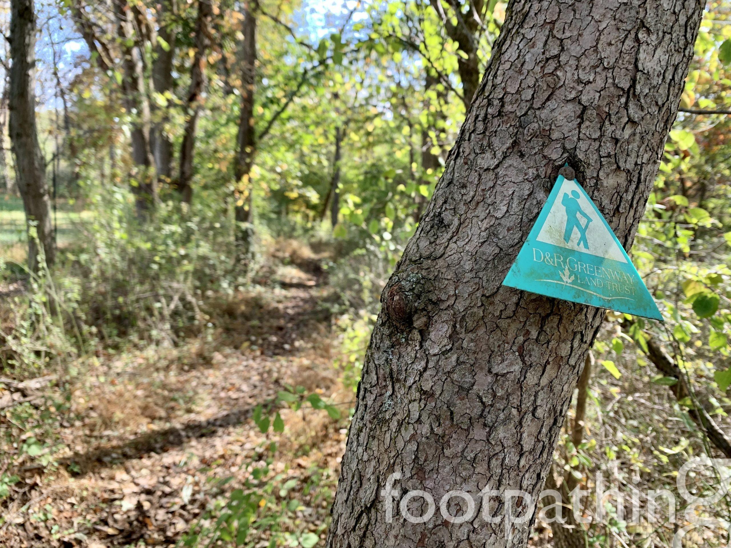 Kate's Trail