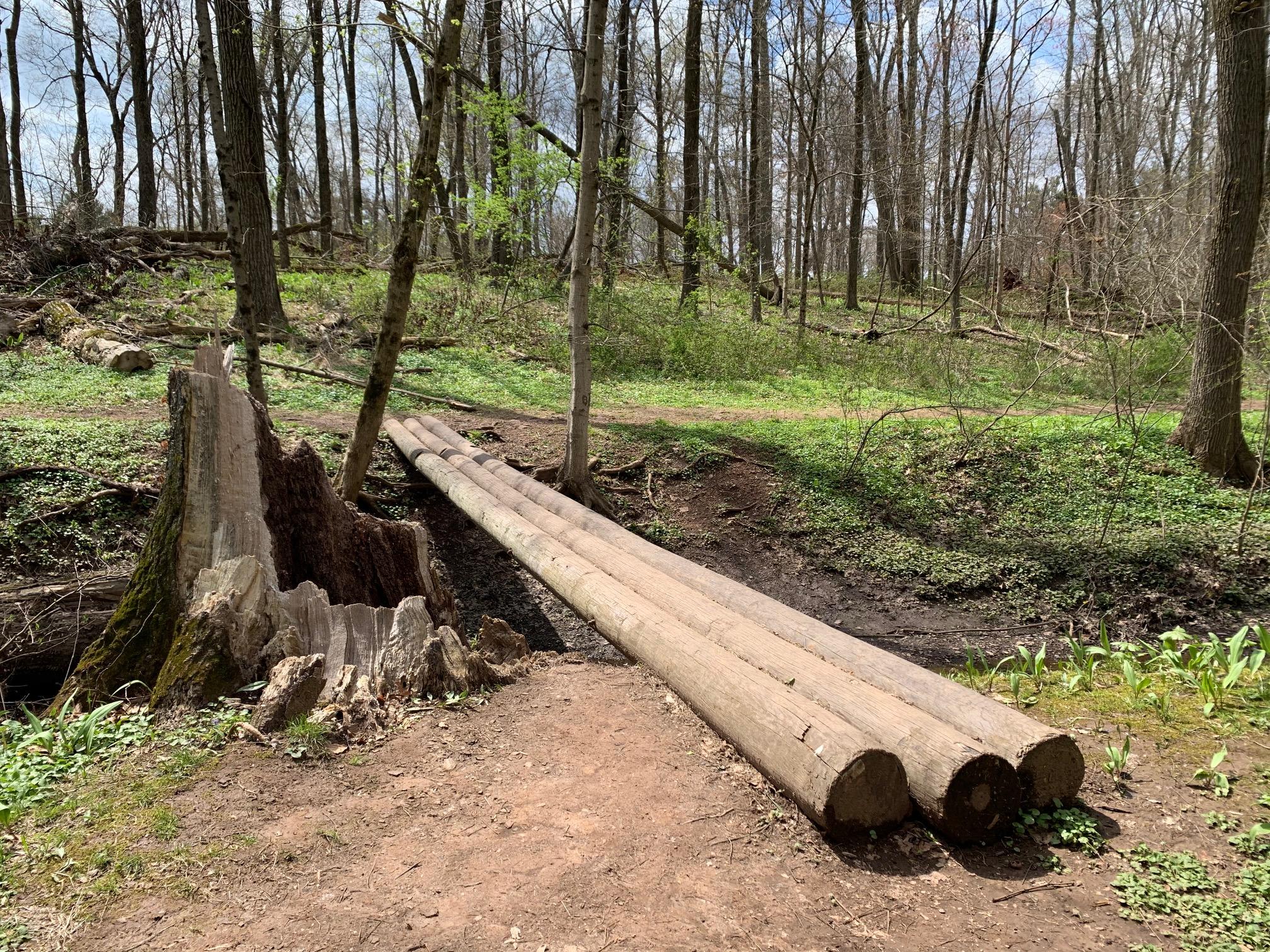 Kunkel Park & Pennington Loop Nature Trail