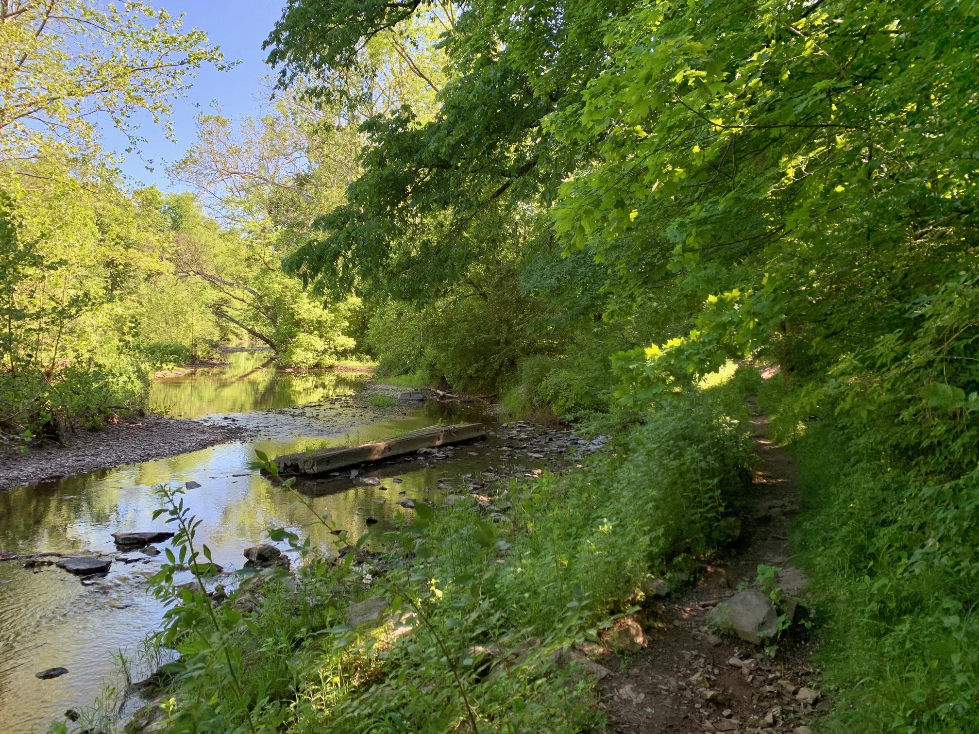Stony Brook at Greenway Meadows